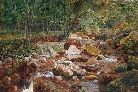 Sowerby, John George : A Rocky Stream Overhung wi...