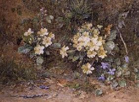Primroses and Violets on a mossy bank