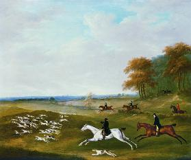 Hunt with Hounds
