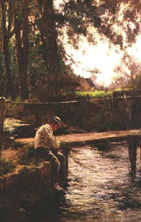 The Young Angler