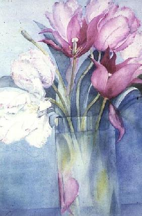 Pink Parrot Tulips and Marlette