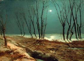 Landscape in Winter at Moonlight