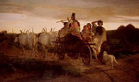 Yoke of oxen returning home