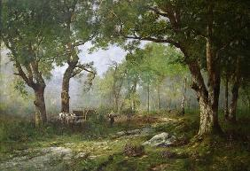The Forest of Fontainebleau, 1890 (oil on panel)