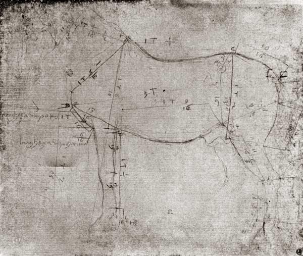 Leonardos Horse Worksheets - Learny Kids