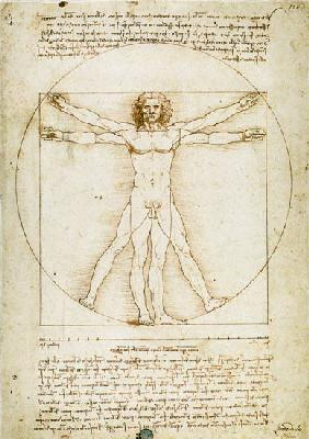 Vitruvian man(proportion drawing)