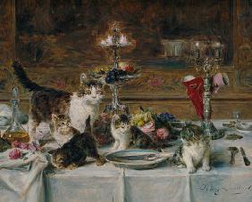 Kittens at a banquet