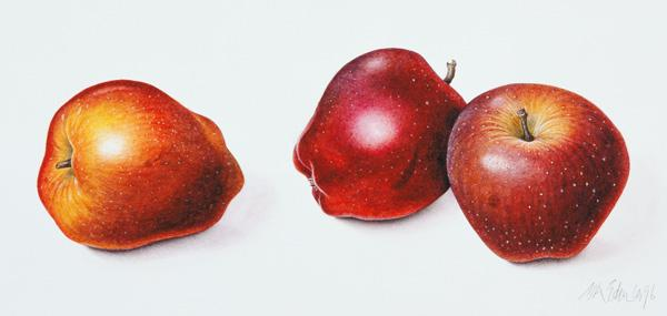 Red Apples, 1996 (w/c on paper)