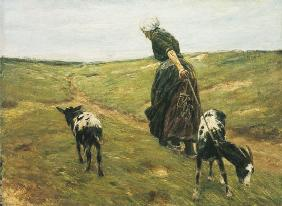 Liebermann, Max : Woman with nanny-goats in ...