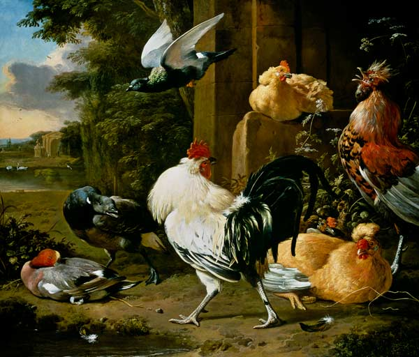 Pigeon And Poultry In A Garden Melchior De Hondecoeter