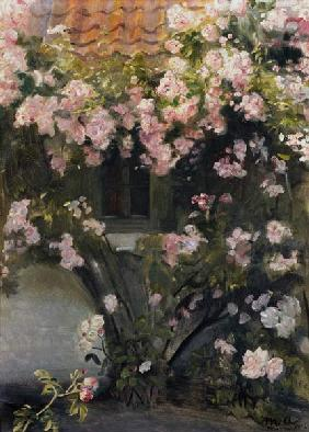 Ancher, Michael Peter : Climbing roses