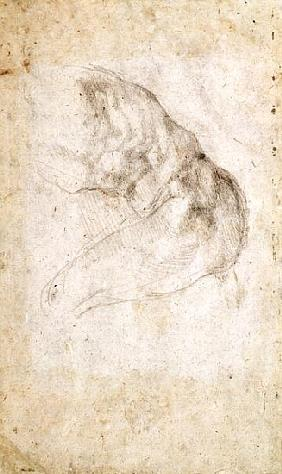 Study for The Creation of Adam(verso) (for recto see 191766)