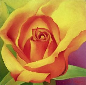 The Rose, 2000 (oil on canvas)