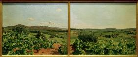 Bazille, Fr�d�ric : Bazille / Study for Grape ...
