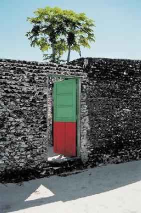 Red green door (photo)