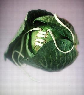Cabbage with laces, 2000 (colour photo)