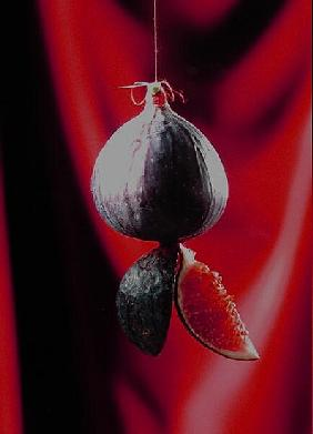 Fig on a string with segments, 2003 (colour photo)