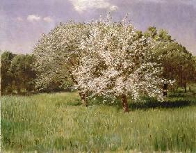 Szinyei-Merse, P�l : Blossoming trees