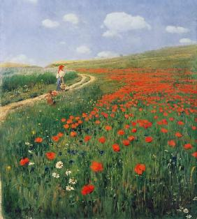 Summer landscape with a blossoming poppy 1902