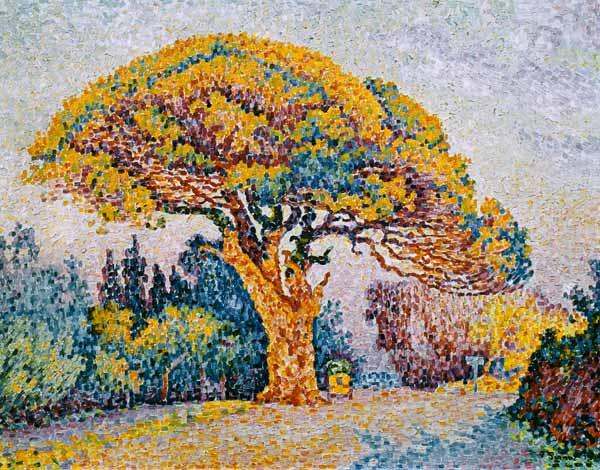 Signac, Paul : Pines in Saint Tropez