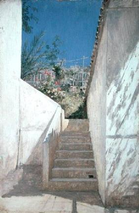 Steps in a Garden, Algeria