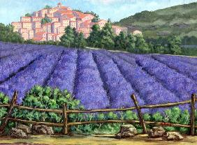 The French Lavenderfield