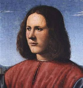 di Cosimo, Piero : A Young Man