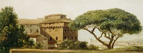 View of the convent of Ara Coeli: the umbrella pine (oil on paper)