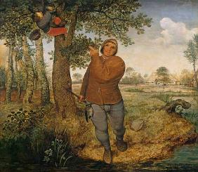 Brueghel the Elder, Pieter : The bird thief.