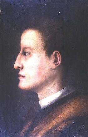 Cosimo de' Medici I (1519-74): as a young man