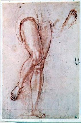 Study of a pair of legs and two feet for a figure of St. Michael (red chalk with pen & ink)