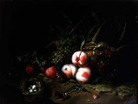 Still Life-Fruit