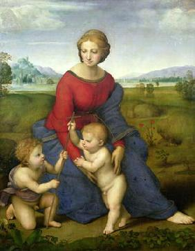 Madonna in the Meadow, 1505 or 1506 (panel)