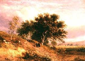 English Rural Landscape