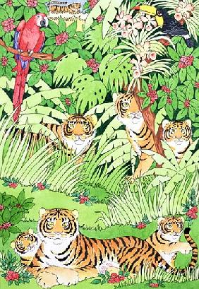 Tiger Jungle