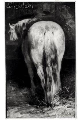 G�ricault, Jean Louis Th�odore : Uncertain, the Horse in th...