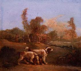 Spaniels in a landscape with keeper