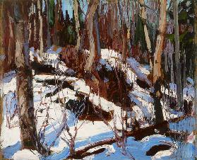 Winter Thaw in the Woods