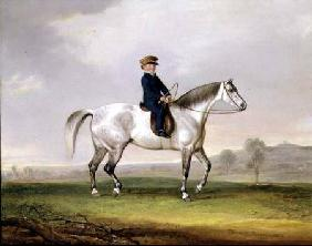 Master Edward Humphries on his Grey Pony