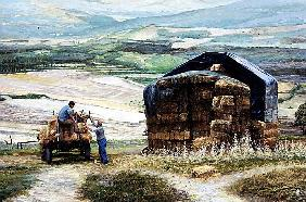 Haymaking, Volterra, Tuscany (oil on canvas)