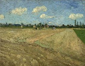 Ploughed fields (The furrows)