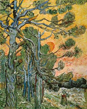 van Gogh, Vincent : Pines with setting sun and...