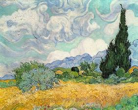 van Gogh, Vincent : Wheatfield with cypresses