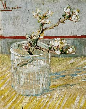 van Gogh, Vincent : Blossoming Almond Branch i...