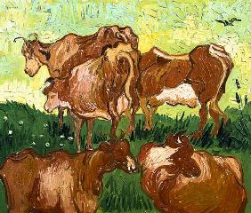 Cows (after Jordaens)