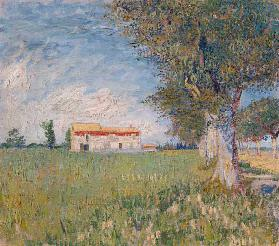 Farmhouse in a wheat field