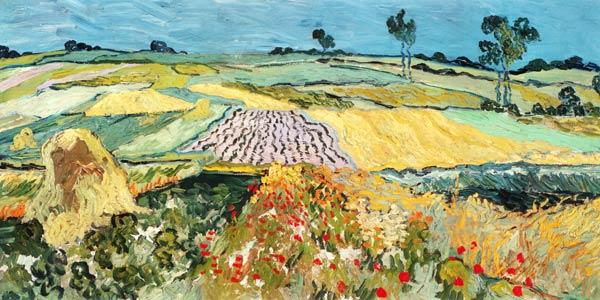 Fields at Auvers 1890