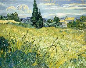 Landscape with Green Corn 1889