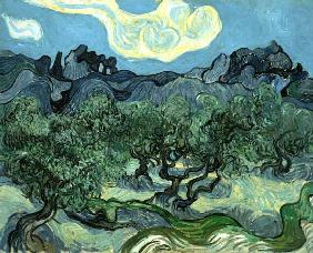 van Gogh, Vincent : Landscape with olive trees