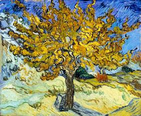 van Gogh, Vincent : Mulberry Tree